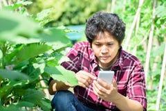 Asiatisk ung bonde som använder smartphonen i jordbruk Fotografering för Bildbyråer