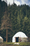 Asiatisk yurt i mitt av skogen i bergen royaltyfri foto