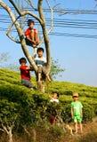 Asiatiska barn, aktiv unge, utomhus- aktivitet Arkivbild