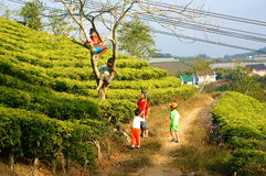 Asiatiska barn, aktiv unge, utomhus- aktivitet Royaltyfria Foton