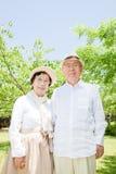 Asiatiska gammalare par Arkivbild