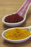 asiatiska kryddor Royaltyfri Foto