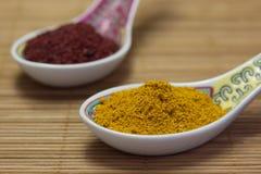 asiatiska kryddor Royaltyfri Bild