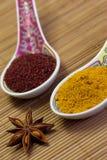 asiatiska kryddor Arkivfoto