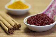 asiatiska kryddor Arkivbild