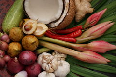 asiatiska kryddor Royaltyfri Fotografi