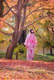 Asiatiska kvinnor i traditionell japansk kimono på den japanska zenen arbeta i trädgården Arkivfoton