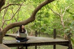 Asiatiska kvinnor som arbetar och dricker kaffe efter utbildningsnatur och skog, matar in bärbara datorn under stort träd Mangrov royaltyfria bilder