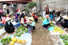 Asiatiska kvinnor som säljer frukt i marknaden Arkivfoto