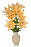 Asiatiska liljablommor, lat. Asiatiska bland, i en keramisk vas Royaltyfri Foto