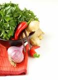 Asiatiska matingredienser (ingefära, chili, koriander och vitlök) Arkivfoton