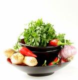 Asiatiska matingredienser (ingefära, chili, koriander och vitlök) Royaltyfri Foto
