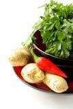 Asiatiska matingredienser (ingefära, chili, koriander och vitlök) Royaltyfria Bilder