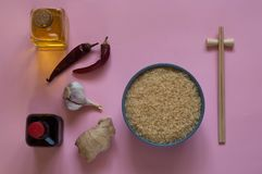 Asiatiska matingredienser, kryddor och såser på ett ljus - purpurfärgad bakgrund Några typer av asiatisk kokkonst, bästa sikt, ko Royaltyfri Foto