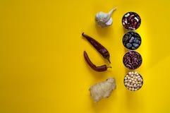 Asiatiska matingredienser och kryddor på en ljus gul bakgrund Begreppet av den populäraste disken, bästa sikt, kopieringsutrymme Arkivbild