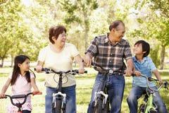 Asiatiska morföräldrar och barnbarn som rider cyklar parkerar in royaltyfri fotografi