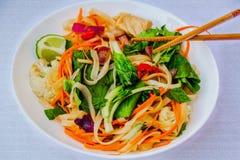 Asiatiska nudlar med höna, moroten och andra grönsaker Royaltyfri Foto