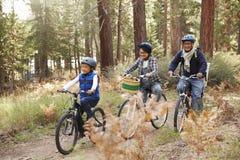 Asiatiska par och son som cyklar i en skog, sidosikt royaltyfria foton