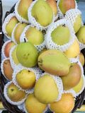 asiatiska pears Royaltyfri Fotografi