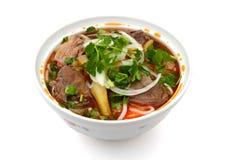 Asiatiska stilnötköttnudlar i soppa Royaltyfria Bilder