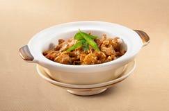 Asiatiskt griskött för matClaypot curry royaltyfria bilder