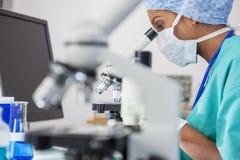 Asiatiskt Using Microscope In för kvinnadoktor forskare laboratorium Arkivfoton