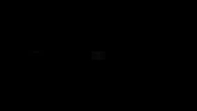 Asien-Überwachung lizenzfreie abbildung