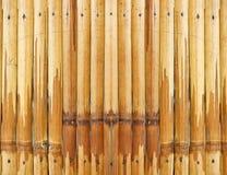 Asien-Bambusbeschaffenheit Stockfotos