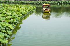 Asien China, Peking, Beihai Park, der Lotosteich, das Boot Lizenzfreie Stockbilder