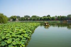 Asien China, Peking, Beihai Park, der Lotosteich, das Boot Stockfotografie