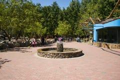 Asien China, Peking, Daxing, wilder Tierpark, Park Landscapeï-¼ Œ Stockbilder