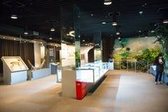 Asien China, Peking, geologisches Museum, Innenausstellungshalle Lizenzfreie Stockfotografie