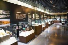 Asien China, Peking, geologisches Museum, Innenausstellungshalle Lizenzfreie Stockfotos