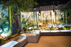 Asien China, Peking, geologisches Museum, Innenausstellungshalle Stockfoto