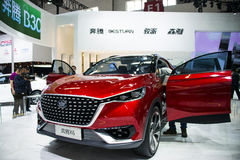 Asien China, Peking, internationale Ausstellung des Automobils 2016, Innenausstellungshalle, Pentium X6, Konzeptauto, Stockfotografie