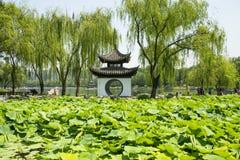 Asien, China, Peking, taoranting Park, Pavillon, Lotosteich Lizenzfreie Stockbilder