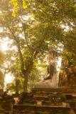 ASIEN HISTORISKA THAILAND AYUTHAYA PARKERAR TEMPLET Royaltyfria Bilder