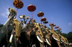 ASIEN INDIEN KERALA Stockfotografie