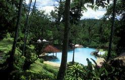 ASIEN INDONESIEN BALI TROPISK HOTELLPÖL Royaltyfria Bilder