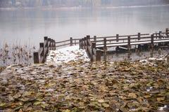 Asien Kina, Peking, chaoyang parkerar, vinterlandskapet, träbron som är lövfällande Arkivfoto
