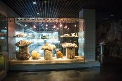 Asien Kina, Peking, geologiskt museum, inomhus mässhall Fotografering för Bildbyråer