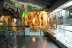 Asien Kina, Peking, geologiskt museum, inomhus mässhall Royaltyfria Foton