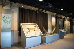 Asien Kina, Peking, geologiskt museum, inomhus mässhall Arkivbilder