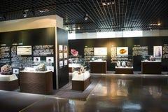 Asien Kina, Peking, geologiskt museum, inomhus mässhall Royaltyfri Bild