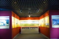 Asien Kina, Peking, geologiskt museum, inomhus mässhall Arkivfoto