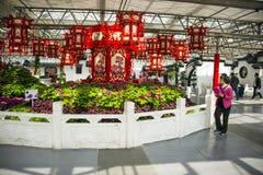 Asien Kina, Peking, jordbruks- karneval, inomhus mässhall, plats, röda lyktor, pion Arkivbilder