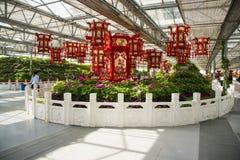 Asien Kina, Peking, jordbruks- karneval, inomhus mässhall, scene,Red lyktor, pion Arkivfoto