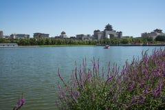 Asien Kina, Peking, lotusblommadammet parkerar, Lakeview, västra järnvägsstation för Peking Arkivbilder