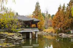 Asien Kina, Peking, Zhongshan parkerar, höstlandskap Royaltyfri Foto