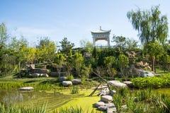 Asien Kina, Wuqing, Tianjin, grön expo, landskapsarkitektur, paviljong Arkivfoton